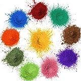 MOSUO Pigments Poudre de Mica, 10 Couleurs Colorant de Savon(20g), Pigment Resine Epoxy Pailletées Naturel Minerale pour Bougies, savons, Boules de Bain, cosmetiques, Vernis à Ongles et Peinture
