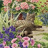 Cat Lazy Summer Days - 1000 Teile - Katzenpuzzle