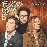 Arduino [Vinyl LP]