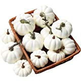 Gresorth 12 Stück Fälschung Weiß Kürbis Künstlich Gemüse Zuhause Party Küche Dekoration