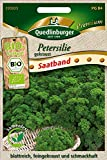Quedlinburger 293925 Saatscheibe Petersilie (Bio-Petersiliensamen)