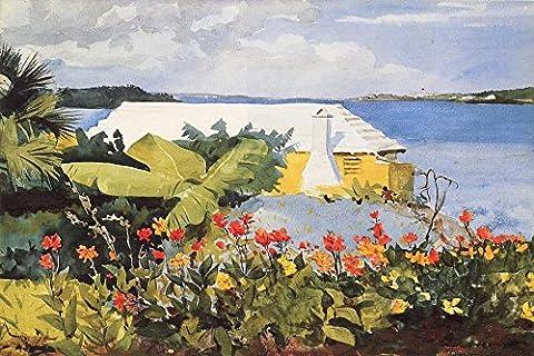 OdsanArt 12 x 8–Inch Post Impressionism de jardin et autres Fleur Bungalow Bermuda'Par Homer, Winslow-haute qualité Fine Art Prints Reproduction de photographie d'Art sur toile