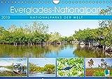 Everglades Nationalpark in Florida (Wandkalender 2019 DIN A4 quer): Zauberhafte Naturschauspiele im Süden der USA (Monatskalender, 14 Seiten ) (CALVENDO Orte)