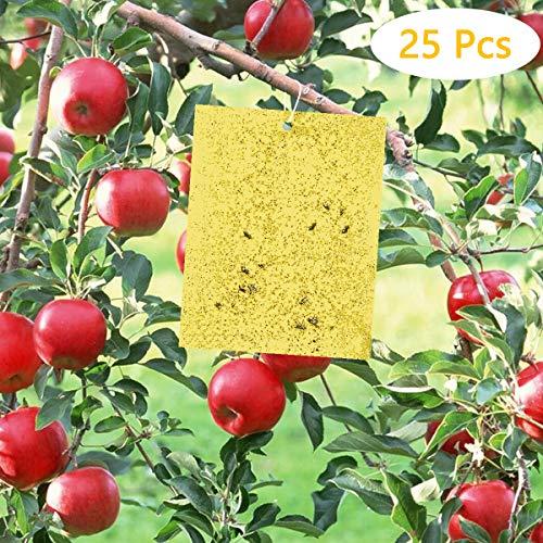 fulfun trappole adesive a due lati, colore giallo, 25 pezzi adesivi di carta per mosche 20 x 15 cm, per molteplici insetti volanti (incluse 25 fascette attorcigliate)