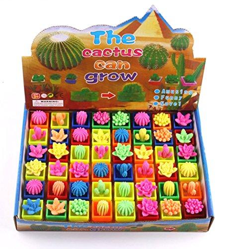 aiernuo-48-pcs-cactus-toy-colorful-water-growing-cactus-ball-cactus-children-kids-magic-cute-expansi