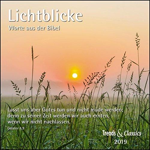 Lichtblicke 2019 - Broschürenkalender - Wandkalender - mit herausnehmbarem Poster und Bibelzitaten - Format 30 x 30 cm: Worte aus der Bibel