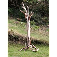 Driftwood Branch Coat stand/Hat stand