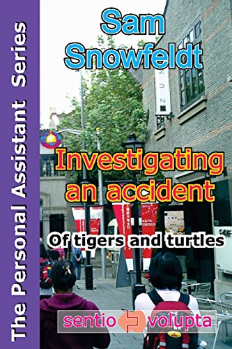Investigating an accident: of tigers and turtles (The Personal Assistant Series, Band 3)