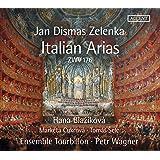 Zelenka: 8 Italian Arias, ZWV 176
