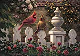 Buffalo Games Emily s Garden by Kim Norlien Jigsaw Puzzle 300 Piece Large