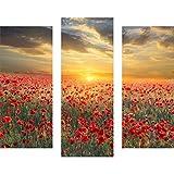 gsmarkt | Dreiteiliges Wandbild - 3 Teilig - Acrylglasbilder Acryl Glasbild 90x80 cm Blume Rot - Wandbilder Wohnzimmer Esszimmer Deko Wanddeko