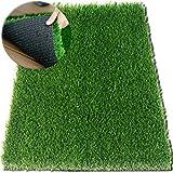 Grün Fußmatte Türmatte Bodenmatte mit Kunstrasen, Schmutzfangmatte Schmutzmatte, sehr robust, wetterfest, Schuhabtreter 61 x 46 cm - Extrem strapazierfähig ✓ Außen & Innen ✓ Waschbar ✓