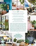 Wohnen in Grün: Dekorieren und stylen mit Pflanzen - 2
