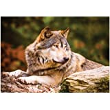 KS Puzzle 100 Parça Lonewolf 10108