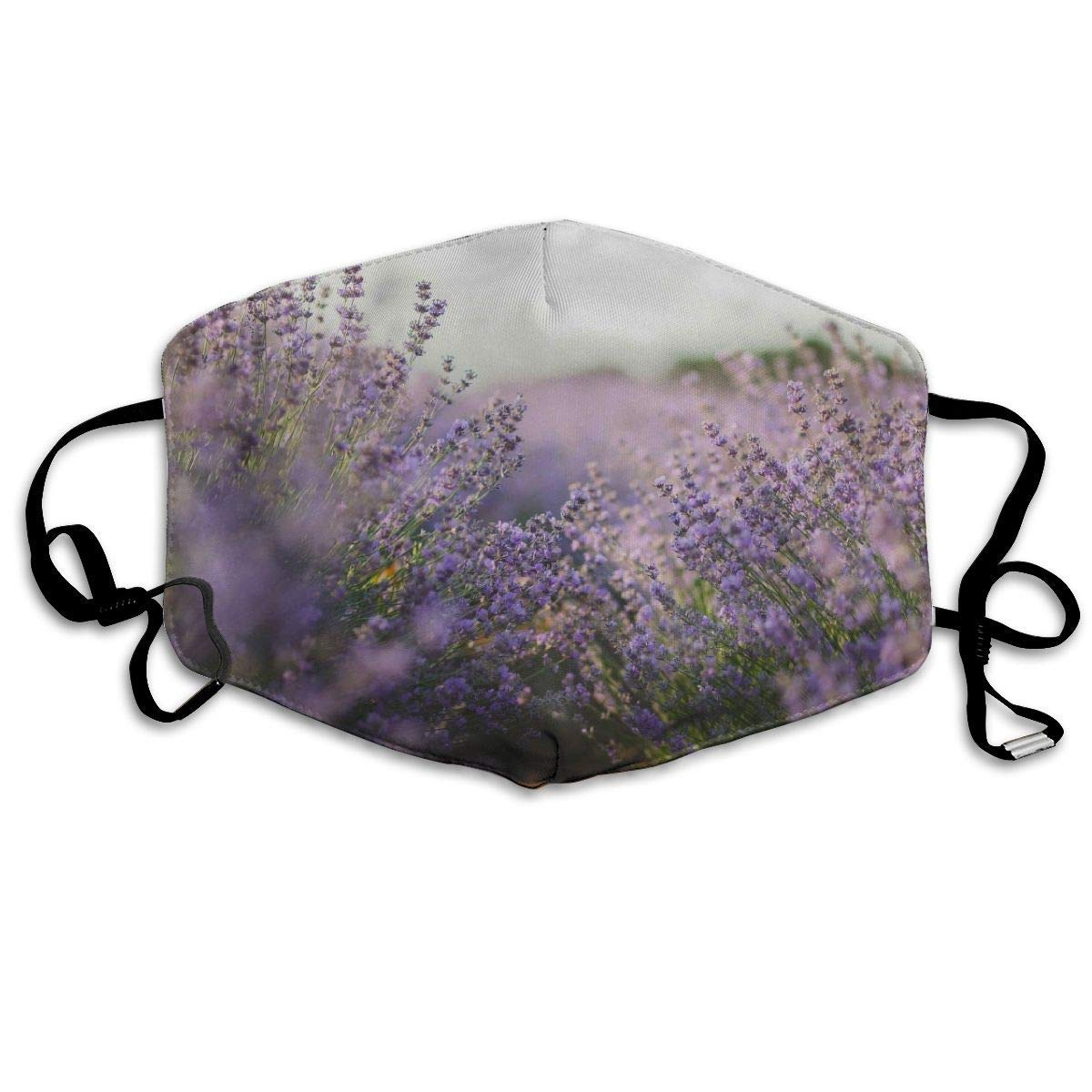 Bdwuhs Mascarillas Bucales,Boca Máscara Dust Mask for Women and Men Violet Lilac Lavender Printed Foldable Mask Face Mask Anti-Dust Mouth Mask