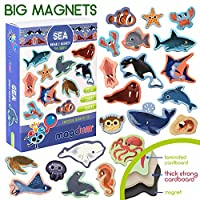 MAGDUM Toy SEA Animals - Animal Magnets for Kids -Real Large Fridge Magnets for Toddlers- Magnetic Educational Toys Baby 3 Year Old Baby Learning Magnets for Kids- Kid Magnets Magnetic Theatre