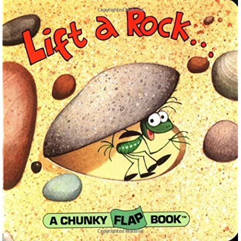 Lift A Rock Chunky Flap Book (Chunky Flap Books) by Christopher Santoro (6-Jan-1994) Board book - Chunky Rock