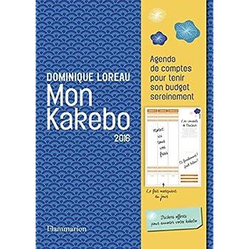 Mon kakebo 2016