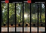 Set 6 Stück Ordner-Etiketten selbstklebend Wald mit Sonnenuntergang