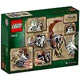 LEGO The Hobbit – La Batalla del Rey Brujo, juego de construcción (79015)