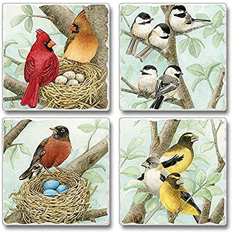 Absorbent Stone Coasters set of 4- Tree Birds by Highland Graphics