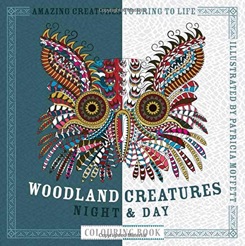 woodland-creatures-night-day-colouring-book