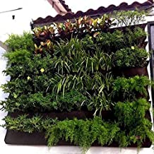 Suchergebnis auf f r pflanzenwand - Vertikale wandbepflanzung ...