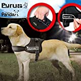 Dog Harness, PYRUS K8 No Pull Harness Dog Lead Padded Pet Walking Harness Heavy Duty for Dogs ( M )