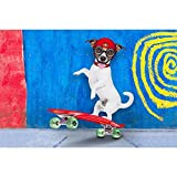 Best Dog Frame - Pitaara Box Jack Russell Skater Dog Canvas Painting Review