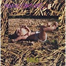 Fall [Vinyl LP]