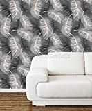 Coloroll Feather Blown Vinyl Wallpaper in Black & White M0925