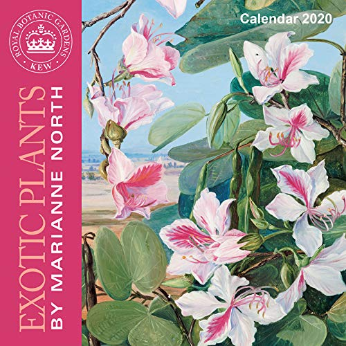Kew Gardens - Exotic Plants by Marianne North - 2020 Calendar