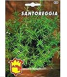 Vivai Le Georgiche Santoreggia (Semente)