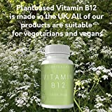 Vitamin B12 Vegan Methylcobalamin 1000mcg - by Plant Based. One Year's Supply 365 tablets. High Strength For Maximum Potency & Absorption. Helps Fight Tiredness And Fatigue, Protect Your Health, Support And Maintain Your Immune System