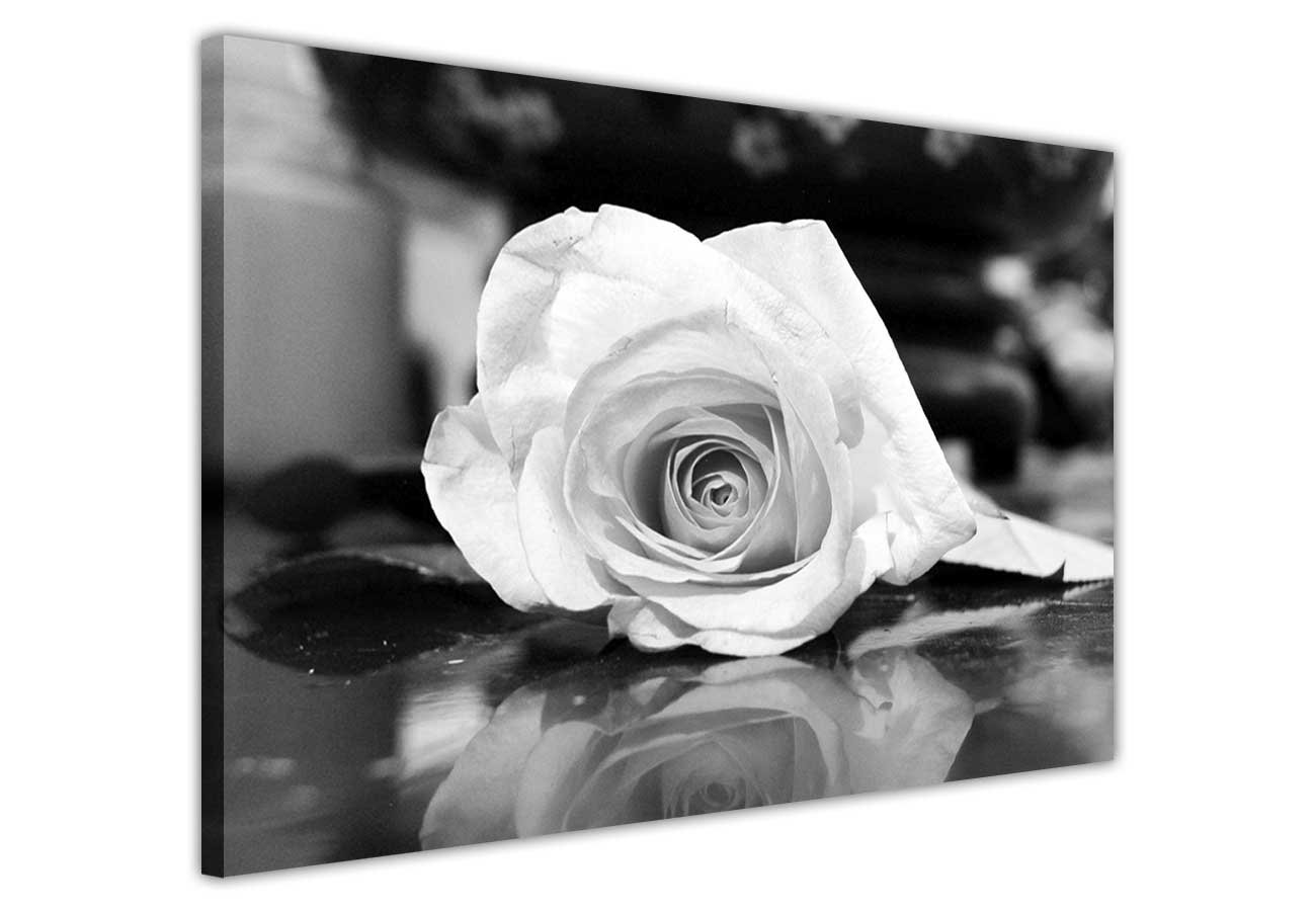 floral canvas wall art prints pictures black and white rose