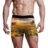 XiangHeFu Slip Uomo Boxer Sunset Girasole Field Stretch Traspirante