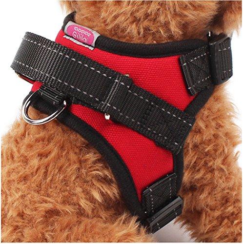gililai-harnais-sans-tirer-collier-pour-chien-reglable-ideal-pour-marche-randonnee-et-entrainement-c