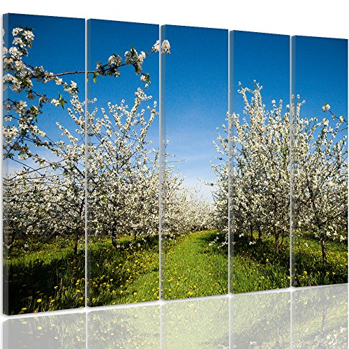 feeby-frames-leinwandbild-bilder-wand-bild-5-teile-wandbilder-kunstdruck-typ-c-70x100-cm-obstgarten-