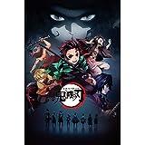 Kimetsu no Yaiba Giyu Tomioka Anime Poster 50 X 35 centimeters