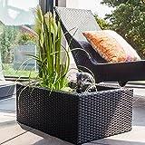Heissner 015195-00 Rattan Water Garden - Black - Heissner - amazon.co.uk
