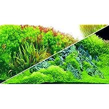 Decorativos para acuarios. Hobby Paneles Foto Posterior Plan Ted River/Green Rocks