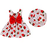 Zrom 0-3 Years Baby Girls Dress,Toddler Baby Kids Girls Strawberry Print Princess Dress Hat Outfits Clothes