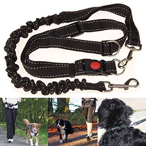 Bluelover Frei Frei Elastische Haustier Hund Blei Laufen Jogging Taille Gürtel Leine