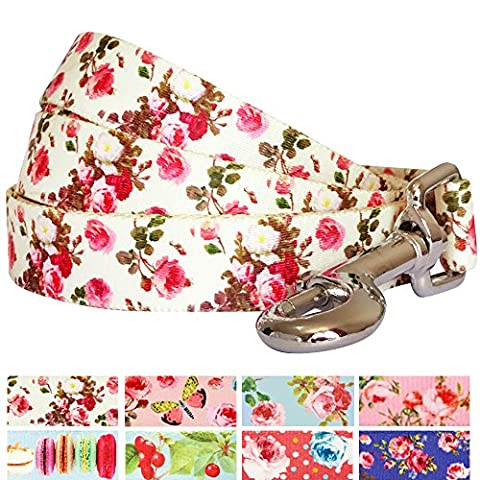 Blueberry Pet Durable Spring Scent Inspired Pink Rose Print Ivory Dog Lead 150 cm x 2cm , Medium, Leads for Dogs, Matching Collar & Harness Available