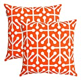 TreeWool, (2 Pack) Cushion Covers Octaline Accent in Cotton Canvas (40 x 40 cm, California Orange & White)