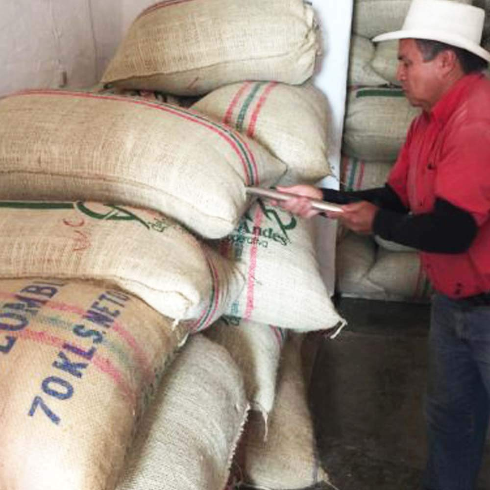 Redber-Colombia-Excelso-Huila-Green-Coffee-Beans