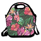 Dragonfly Painting Women Girls Teens Adults Kids Fashion Reusable Insulated Lunch Box Bag Lunch Tote Handbag Food Container Gourmet Tote for School Work Office Picnic Travel