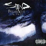 #8: Break the Cycle