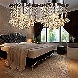 AnntTM 2PACKS Modern Silver Flush Chrome Acrylic Crystal Chandelier Ceiling Pendant Light Lamp Fitting Lighting 1 Light 60W E27,Bulb not Included