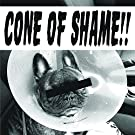 Cone Of Shame [7